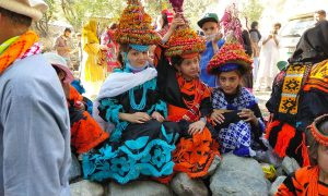 Pholarh festival: Birir valley's festival of flowers and fruits concludes