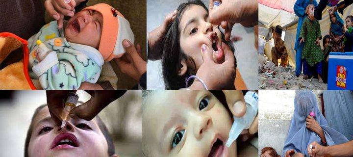 Five day anti polio vaccination drive launched in K P