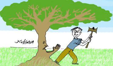 Tree-cutting-1