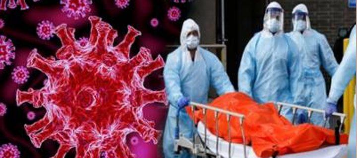 corona virus 1