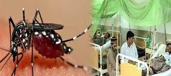 Dengue has spread to 19 districts