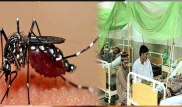 85 people affected by dengue in landi kotal